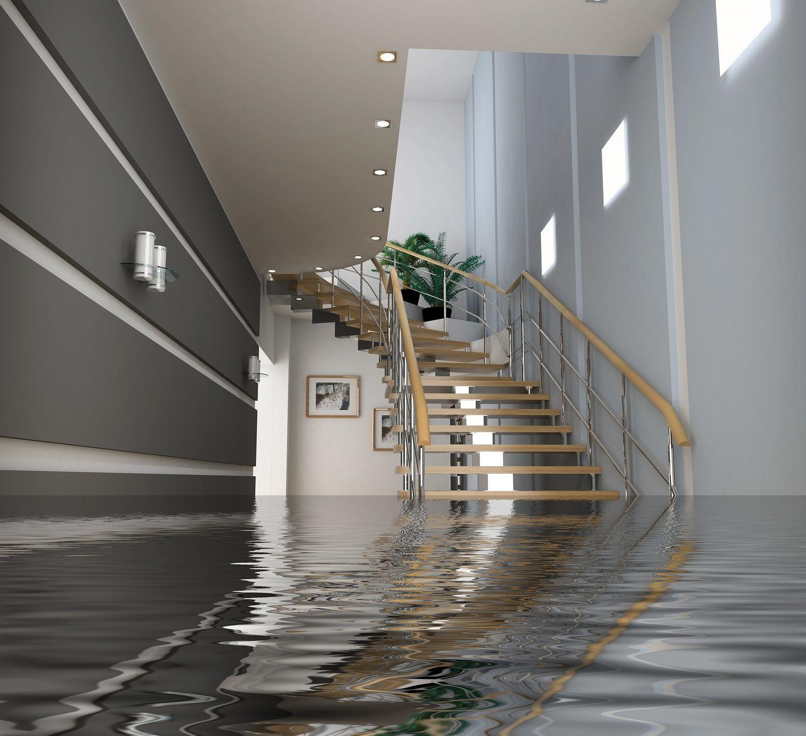 Life After A Flood